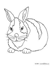 free farm animal coloring pages 105 best farm animal coloring pages images on pinterest coloring