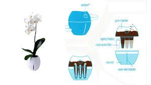 Self Watering Planters by Grobal Greening U0027techno Organic U0027 Self Watering Planters Grobal
