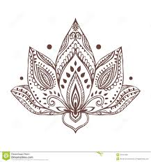 ornament beautiful card with vector stock vector image
