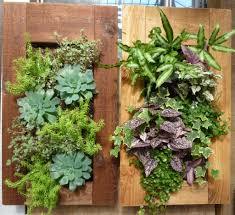 living room 2017 livingwalldisplatys 2017 living wall planter