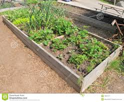 Raised Bed Vegetable Garden Design by Garden Design Garden Design With Vegetable Garden Square Garden
