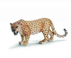 leopard print decor find trendy leopard print home decor