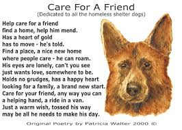 Blind Dog And Friend Care For A Friend By Patricia Walter