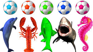 learn colors with sea animals color soccer balls for children