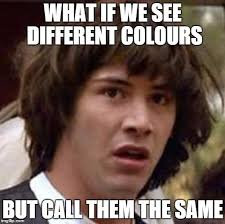 Different Memes - what if we see different colours but call them the same imgflip
