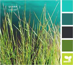 color combination finder decorating color palette finder my result grass color this is