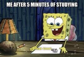 Studying Memes - 11 memes that ll make you feel better about not studying for your finals