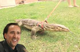 you can walk nic cage u0027s pet lizard around a lake forest park