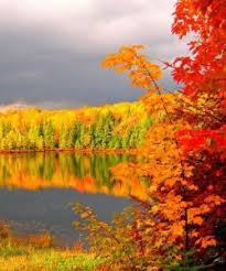 fall color report manitowish waters chamber commerce