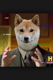 How To Pronounce Doge Meme - how do you pronounce doge doge memes and stuffing
