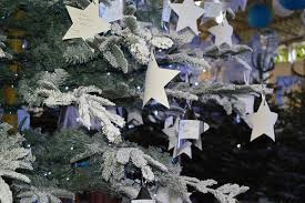 Wish Tree Visit Our U0027santa U0027 Experience And Hang Your Christmas Wish On The