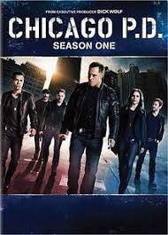 Seeking Saison 1 Wiki Chicago P D Season 1