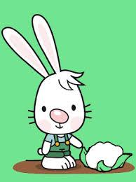 mon petit lapin s u0027est sauvé momes net