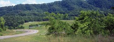 bean station tennessee real estate east tennessee homes cattle