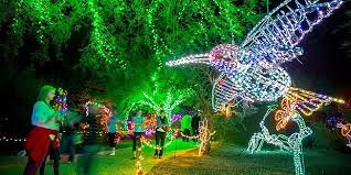 phoenix zoo lights prices phoenix zoo flips switch on annual holiday lights display