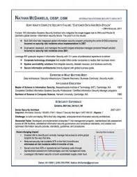Best Example Of Resume by Examples Of Resumes 87 Excellent Professional Resume Portfolio