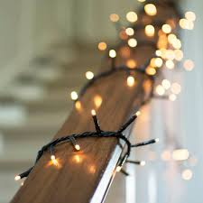 11 best outdoor holiday lights for 2015 gardenista