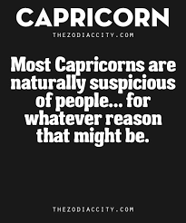 Capricorn Meme - zodiac capricorn traits most capricorns are naturally