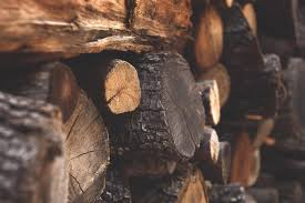 brown firewood free stock photo