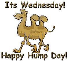 Dirty Hump Day Memes - hump day clipart