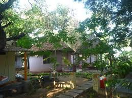 backpacking in india staying in paradise at mowgli guest house in