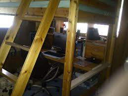 Bunk Bed For Dogs I Need A Way For My To Climb Up To My Loft Bed From The Floor