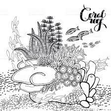 coral reef design stock vector art 504126514 istock