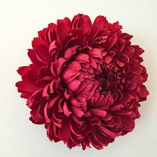 Flower by New Giant Paper Flower Sculptures By Tiffanie Turner Colossal