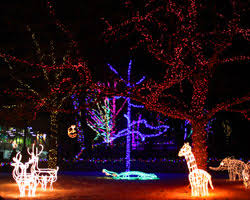 zoo lights at hogle zoo zoolights utah s hogle zoo