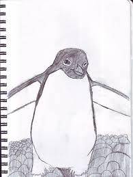 adelie penguin sketch by enricthepenguin92 on deviantart
