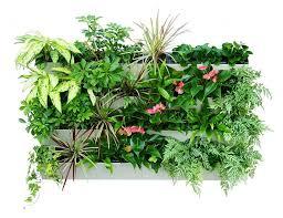 vertical vegetable garden planters vegetable gardening