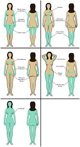 brazilian hair removal pics clearstone illustration guide for laser hair removal for brazilian