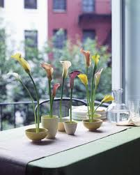 Small Centerpieces 14 Simple Spring Flower Arrangements Table Centerpieces And