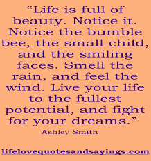 quote about love for your child dreams quotes u0026 sayings pictures and images