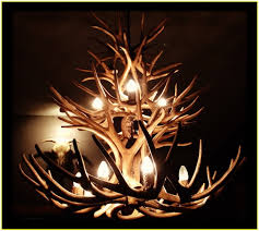 antler chandelier nz home design ideas
