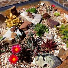 Old Fire Pit - nasty old fire pit turned into a rock garden