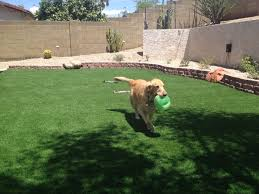 artificial turf is great for dog runs