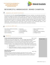 Sample Resume Account Executive by Advertising Resume Examples Online College Resume Builder Resume
