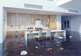 a guide to flooding and water damage help u0026 advice dyno