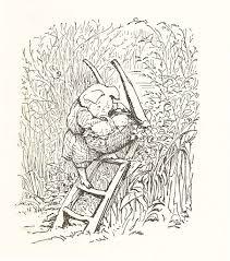 tale of little pig robinson beatrix potter potter