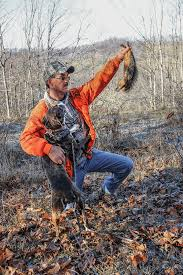 training a bluetick coonhound to hunt how to train your own squirrel dog like a pro plus 4 breeds to