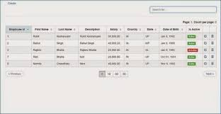 grid layout angularjs rohit kesharwani sorting paging and filter grid using angularjs