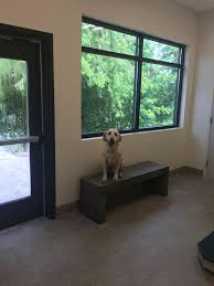 we are floored university veterinary hospital