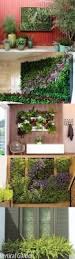 Home Vertical Garden by 68 Best Vertical Garden Images On Pinterest Vertical Gardens