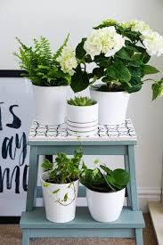 bekvam stool from simple stool to pretty plant stand u2014 the ordinary lovely