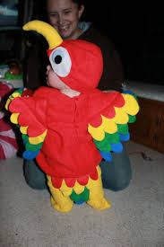 thing 1 u0026 thing 2 halloween costumes 16 best parrot costumes images on pinterest parrot costume