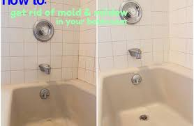 How To Remove Mold From Bathroom How To Get Rid Of Mold And Mildew In Shower Orange Mold