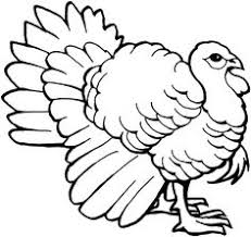 coloring pictures of thanksgiving turkeys embroidery patterns