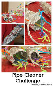 pipe cleaner challenge housing a forest