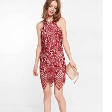 express dress express dresses skirts brand new floral lace contrast sheath